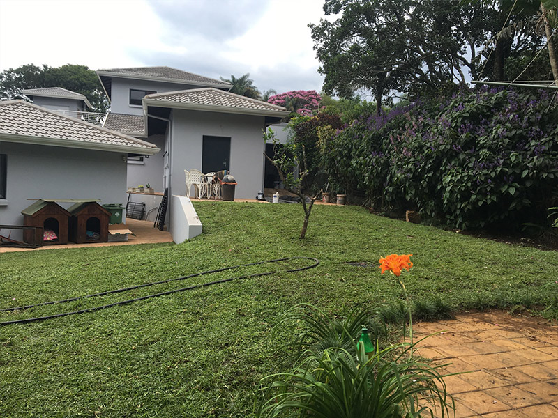 Grass Roots Instant Lawn Landscaping Specialists In Durban