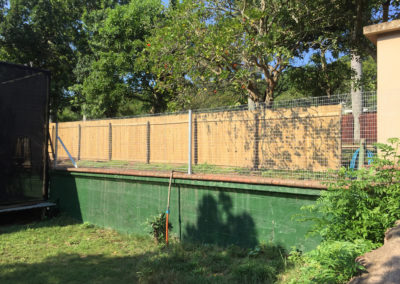 Ace Fencing